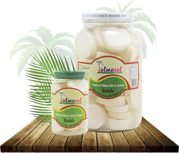palmeira-real-rodela